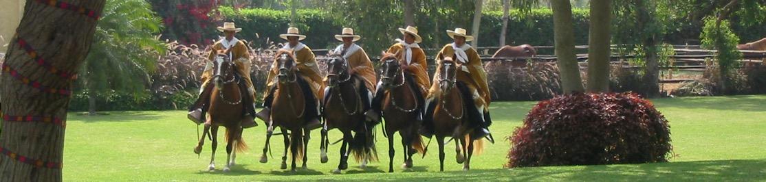 experiences-banner-horsemen