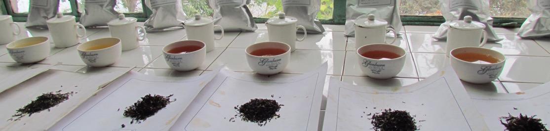 experiences-banner-tea-tasting